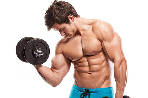 cơ bắp nam